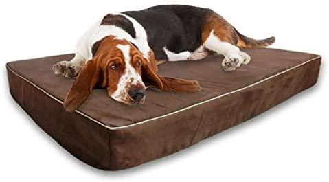dog bed arthritis