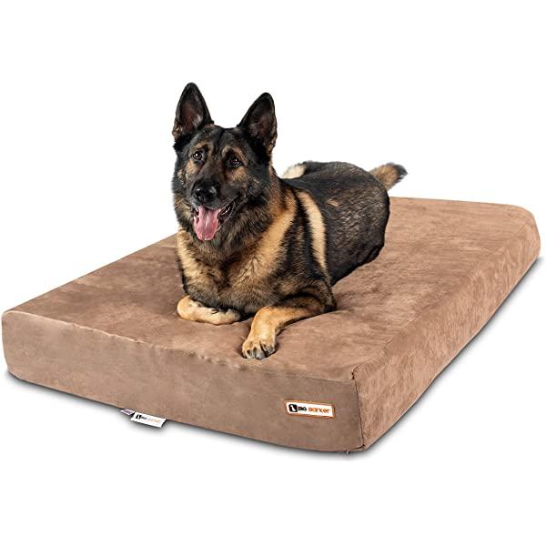 big barker large dog beds australia