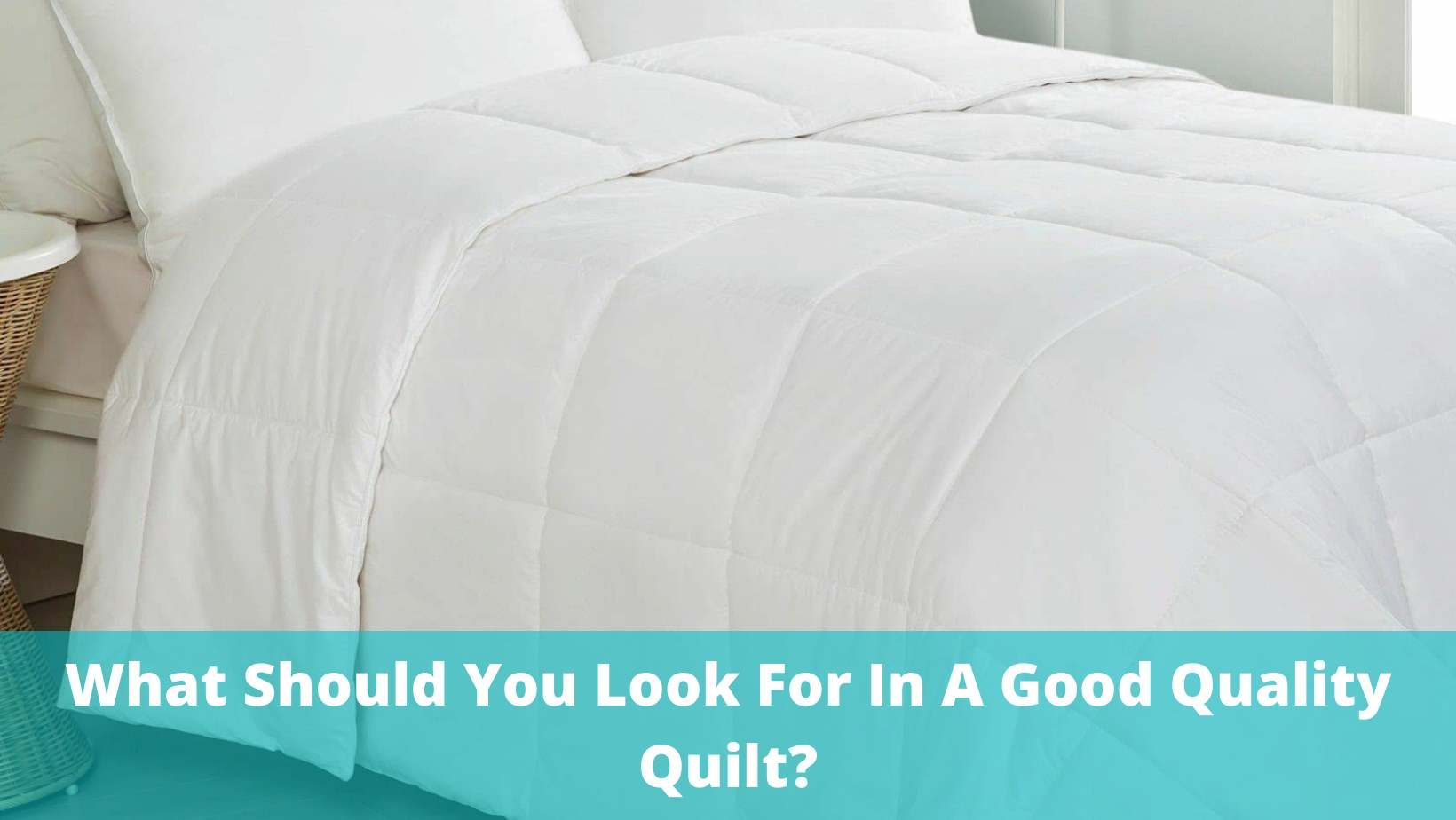 what to look for in quilt